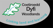 Dyfi Woodlands